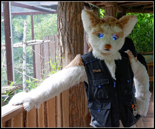 photo Tioh_EF19_04_Zoo_Magdeburg_Fursuitwalk_zps071ec4d5.jpg