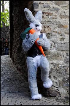 Hug a carrot photo Tioh_MMC14_06.jpg